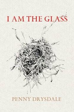 I Am Glass by Penny Drysdale
