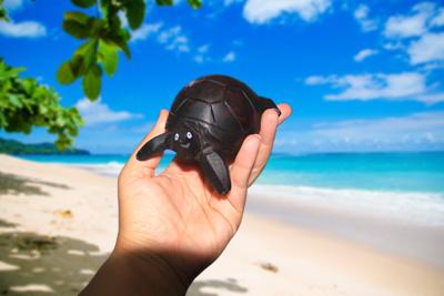 Wooden Handmade Aldabra Giant Tortoise