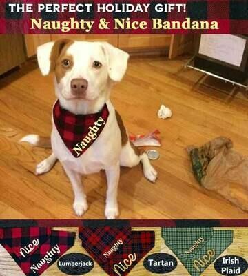 Dog Bandanas - Naughty & Nice  (slides over collar)