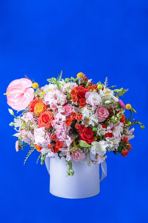 Box Verano floral