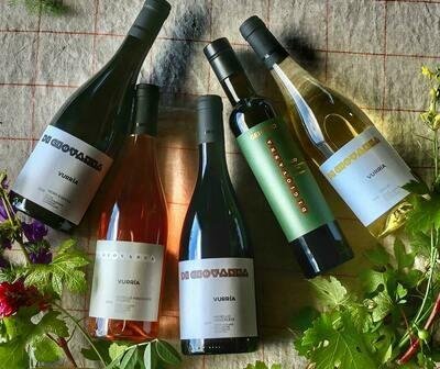 VURRIA Organic Sicilian Wine & Olive Oil - 5 bottles