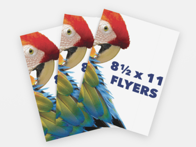 8.5x11 Full Color Flyers - Double Sided