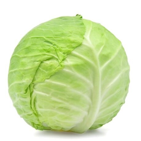 Cabbage - large each