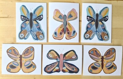 A Collection of Butterflies- mixed box of 6 cards
