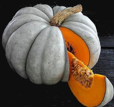 Pumpkin Jarrahdale