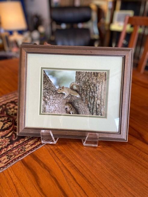 Vintage 1987 Winter Park Squirrel