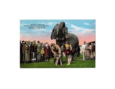 E.C. Kropp Ringling Bros Manicure Linen Postcard
