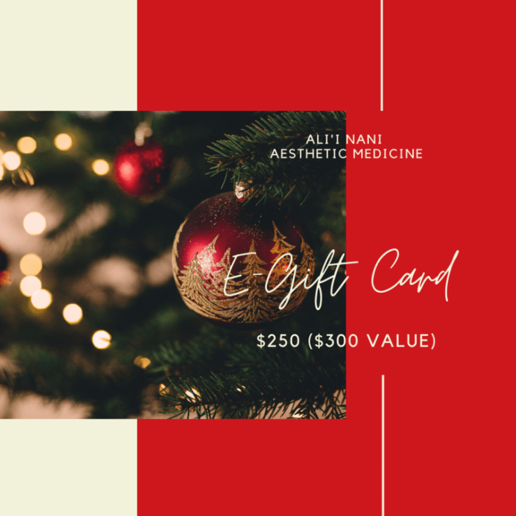 HOLIDAY E- GIFT CARD