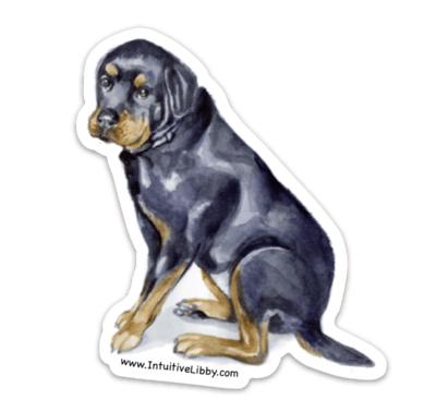 Dezi The Rottweiler Sticker