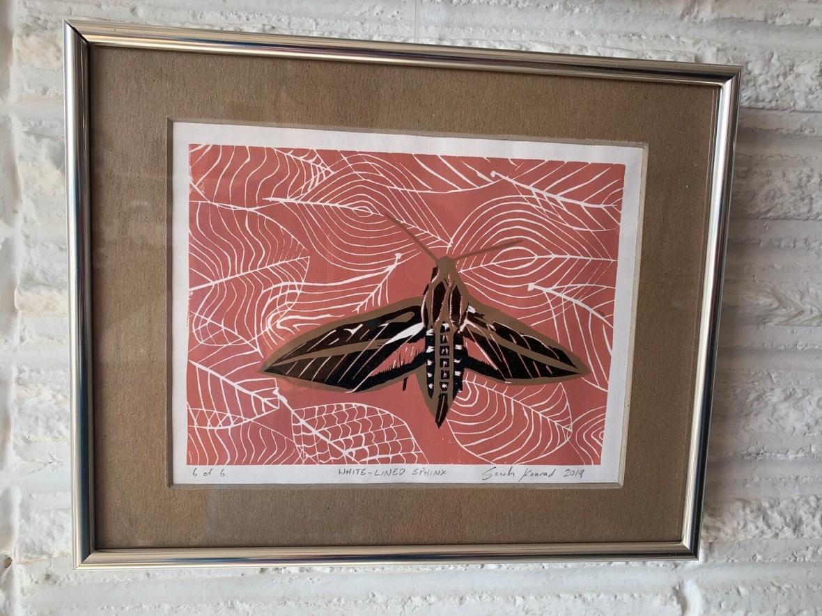 White-Lined Sphinx (linoleum cut print) by Sarah Konrad