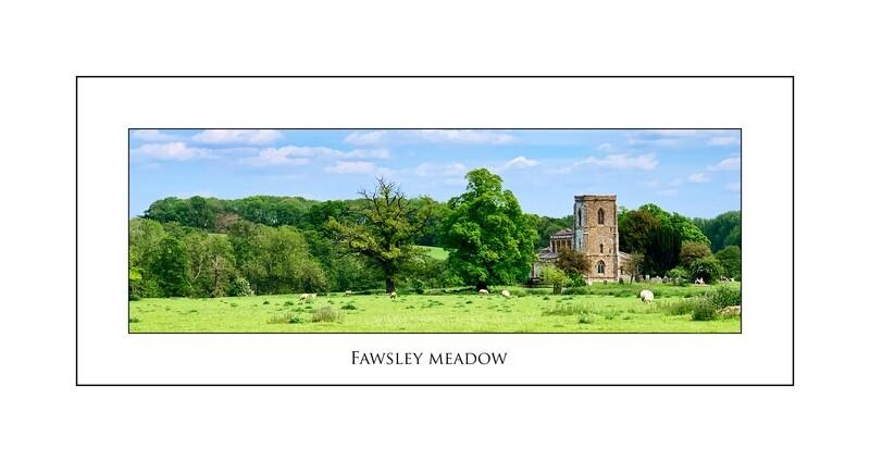 Fawsley Meadow