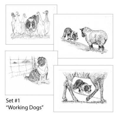 Sheepdog Greeting Cards - MABCR Exclusive! - FREE Shipping