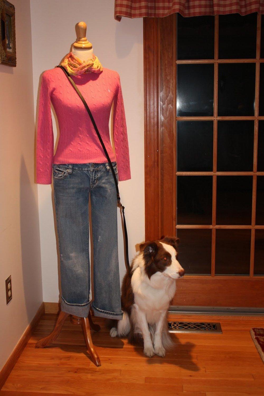 Multi-purpose leather dog leash