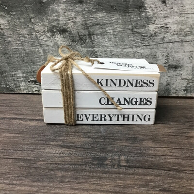 Kindness Changes Everything Stacked Blocks