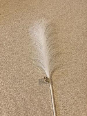 Small Pampas Grass Spray Wht. 28