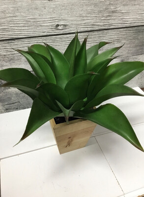 Potted Plastic Agave Plant