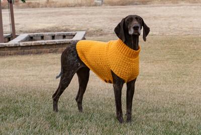 XL- Dog Sweater 50% Deposit