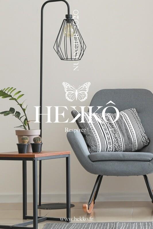 NUANCIER HEKKÔ - Collections Argile Chaux Peintures Végétales