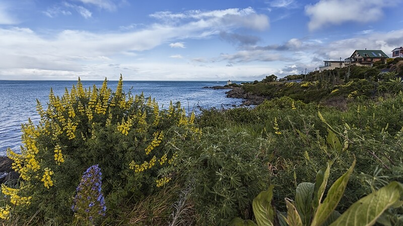 Invercargil, New Zealand 2852