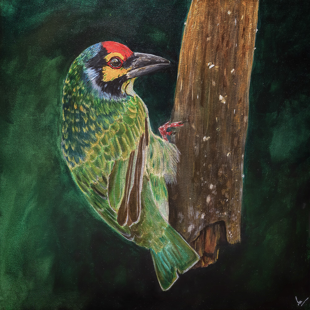 Coppersmith barbet painting 5899