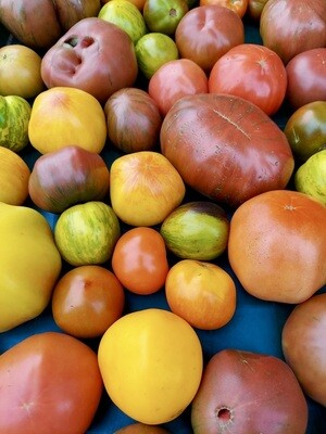 *Simple Gifts Farm HEIRLOOM Tomato 1 lb