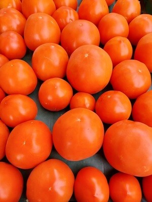 *Simple Gifts Farm Red Slicer Tomatoes 1lb