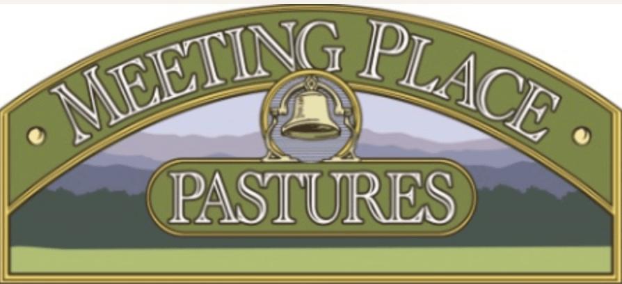 Meeting Place Pastures Beef BONE-IN RIBEYE