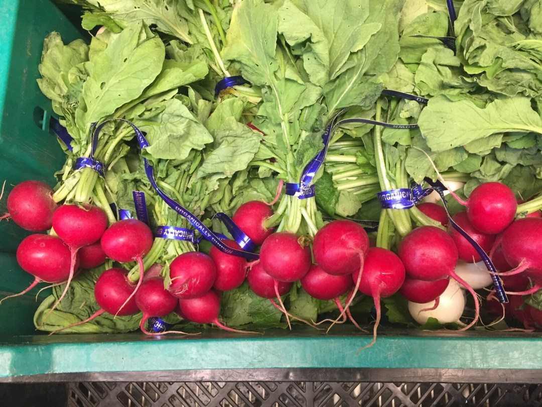 *Simple Gifts Farm RADISH Bunch