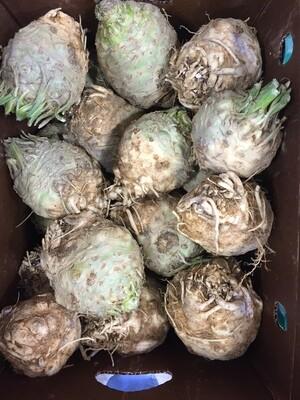 *Atlas Farm Celeriac 1 lb