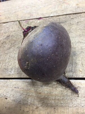 *SGF Red Beets 1 lb
