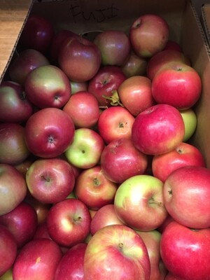 Apples $2/lb - Fuji