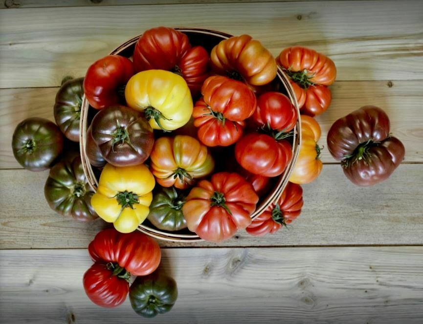 Five College Farm Heirloom Tomatoes 1 lb