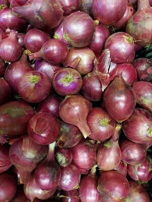 *Juniper Hill Farm Red Onions 1lb