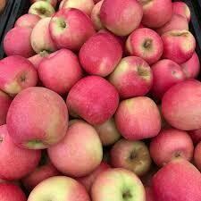 APPLES $2/lb - Pink Lady