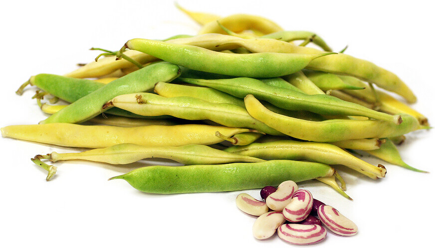 Ox And Robin Seeds- Tiger Eye Beans