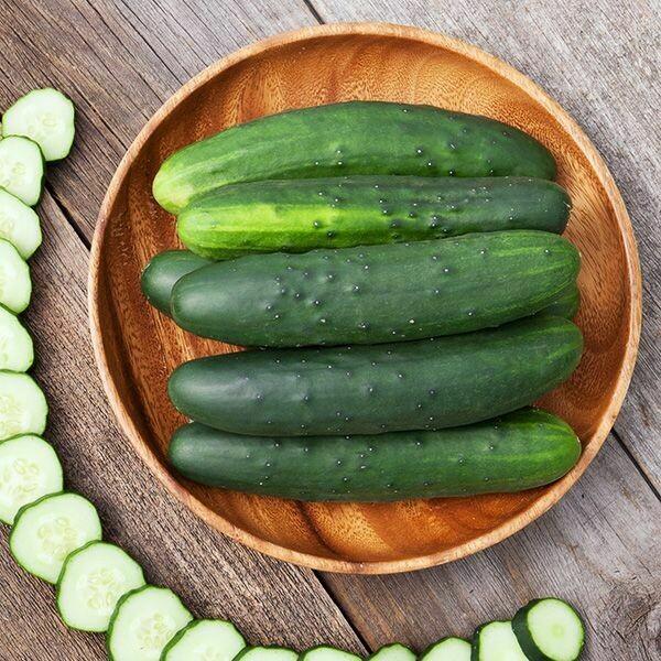 High Mowing SEEDS Marketmore 76 Cucumber