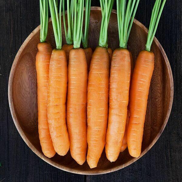 *Juniper Hill Big Carrots 1 lb
