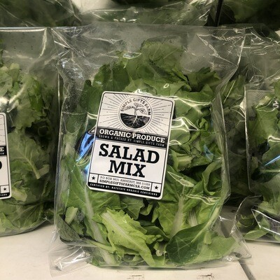 **Simple Gifts Farm Bagged Salad Mix