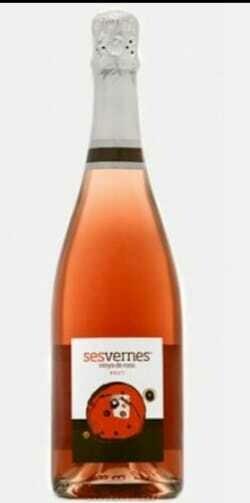 Vinya de Rosa (Reserva 24 mesos)