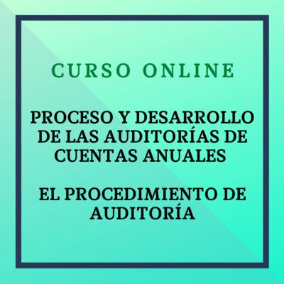 Proceso y Desarrollo de las Auditorías de Cuentas Anuales. El procedimiento de auditoría. Del 4 octubre al 28 noviembre de 2021