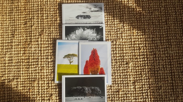 A selection of 5 colour and black and white cards