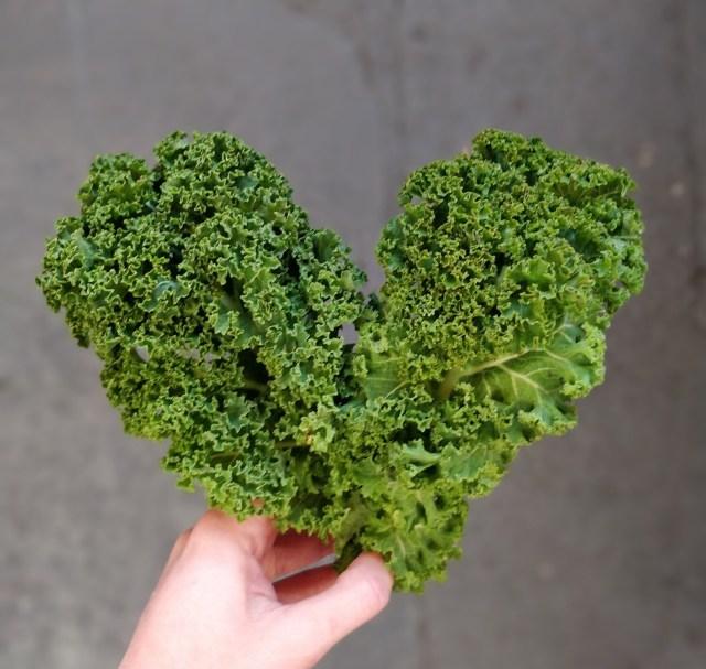 Organic Curly Kale 100g