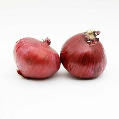 Organic Red Onion 100g