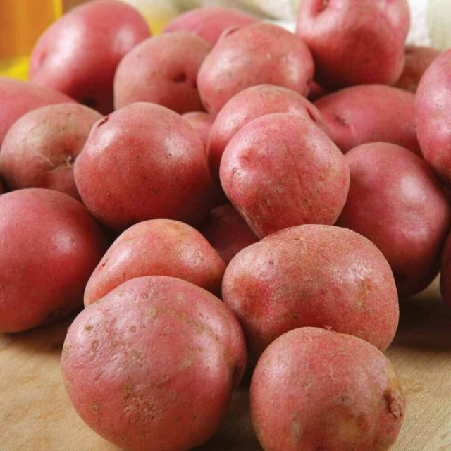 Organic Red Potato 100g
