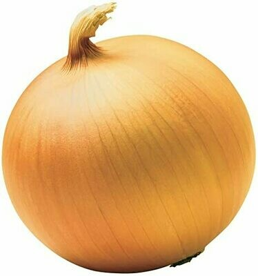 Spanish Onion 100g