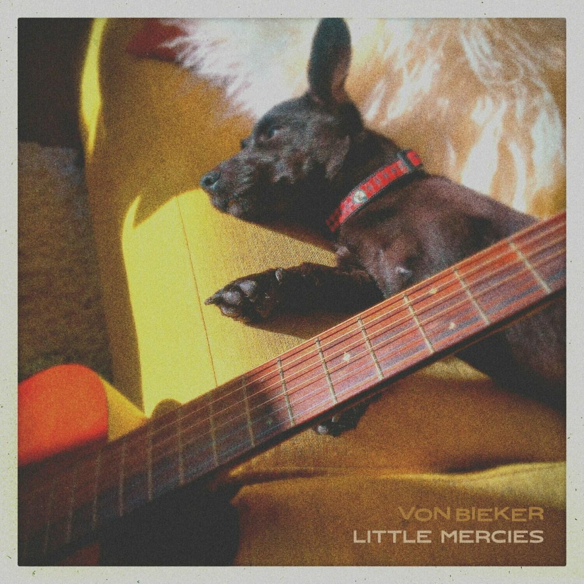 Little Mercies - Digital Single