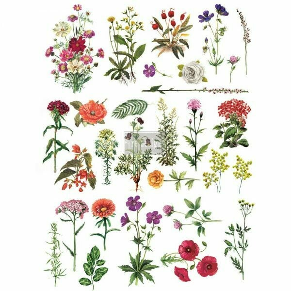 Prima Decor Transfer: Floral Collection