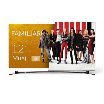 ABONIM/RIABONIM TIBO FAMILJARE 12 MUAJ NË BOX QUADCORE OSE SMART TV