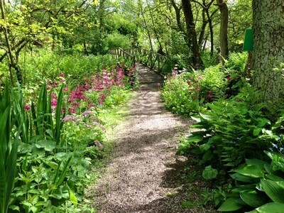 NGS OPEN DAY (Charity Event) Sunday 16th May