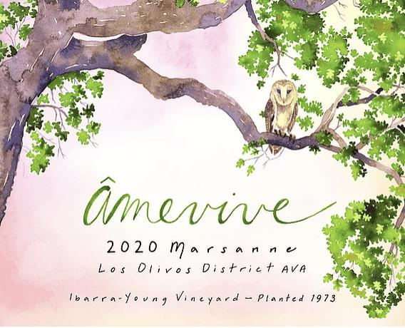 Amevive Marsanne Ibarra-Young Vineyard